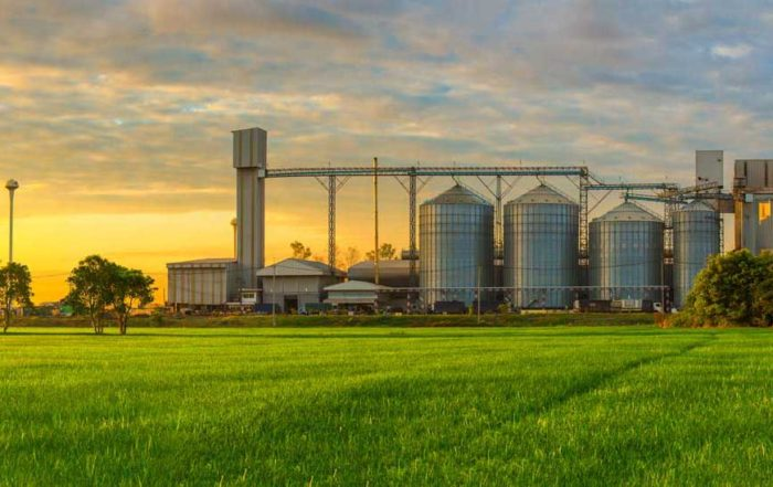 Bourne Recruitment Flour Milling and Agriculture